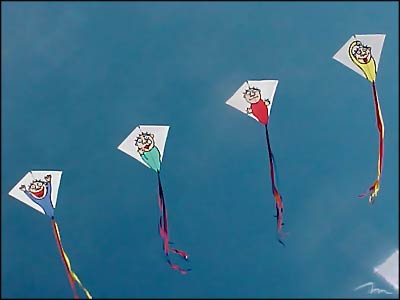 kite-competition