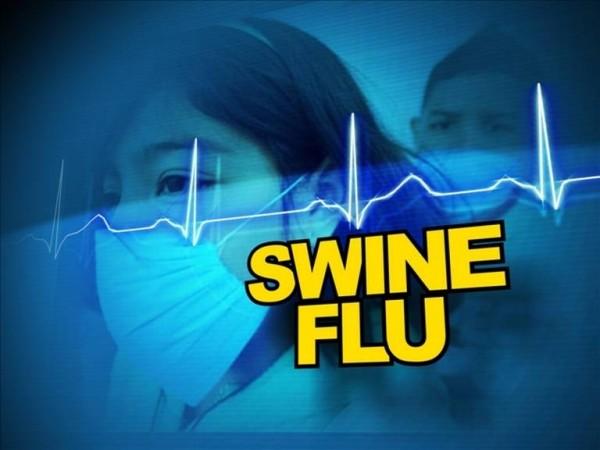 swine-flu_3