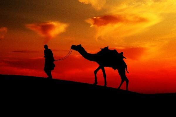 Rajasthan Photographic Association