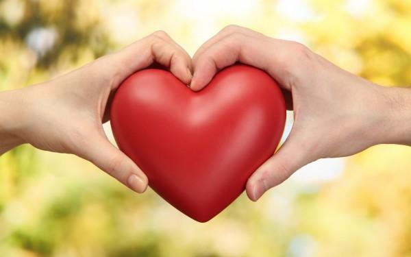 Cardiac medical camp